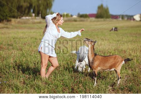 Woman is stroking a domestic goat they are in a field on a farm.
