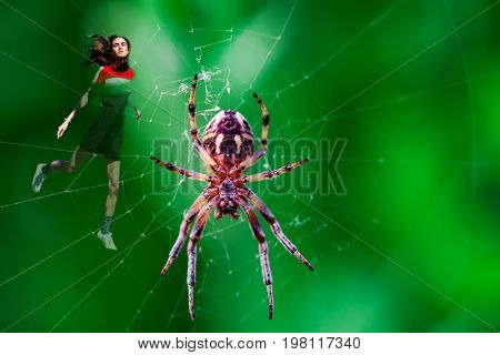 A young girl was caught in the web with a large spider in the center. Collage, concept, danger, captivity, stalemate