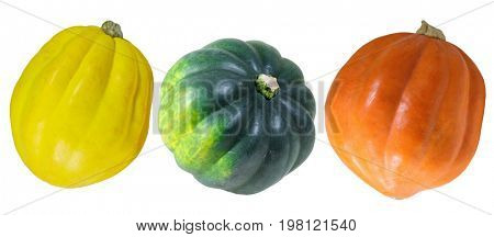 Three pumpkin gourds  in yellow, orange and green isolated on white background