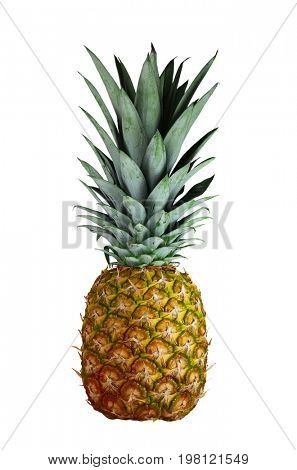Rip pineapple fruit isolated on white background