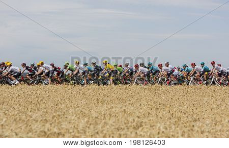 Vendeuvre-sur-Barse France - 6 July 2017: The peloton passes through a region of wheat fields during the stage 6 of Tour de France 2017. Yellow Jersey - Chris Froome Polka Dot Jersey - Fabio Aru Green Jersey - Arnaud Demare