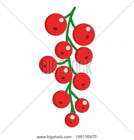 Red currant fresh juicy berry icon, vector illustration flat style design isolated on white. Colorful graphics