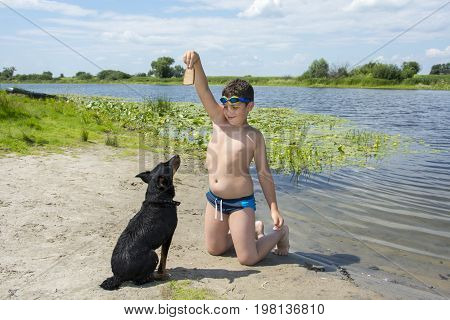 In summer a bright sunny day on the river the boy is trained by a dog. He holds bread in his hand.