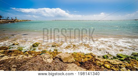 a coastal landscape near padre island texas