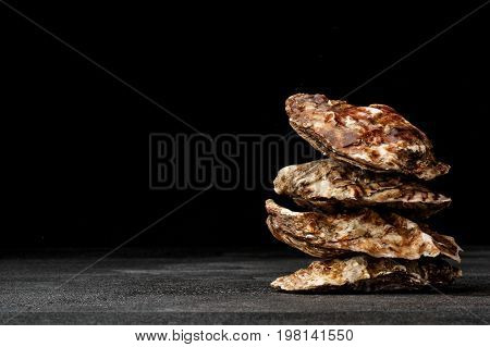 A small pile of four juicy oysters on a black background. Fresh tropical sea mollusks full of nutrients. Closed seashells with the one-sidedly convex hull. The greatest delicacy. Copy space.