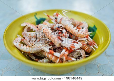 Prepared langoustines in a plate close-up outdoors