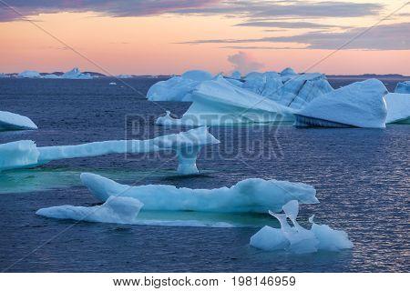 icebergs in quiet bay at sunset; Fogo Island, Newfoundland, Canada