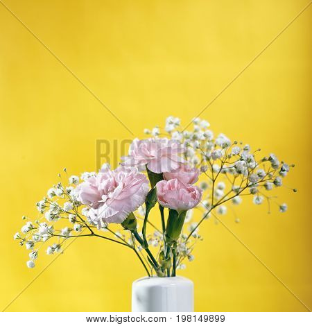 Small bouquet of pink Carnations Flower. Pink Carnations Flower on Yellow Background