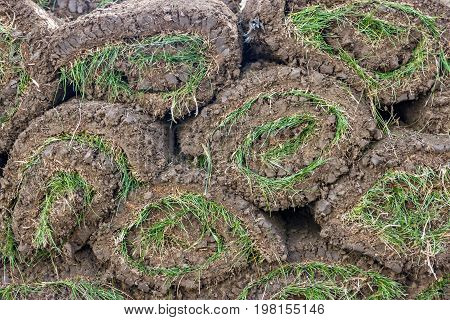 Pile Of Sod Rolls Background