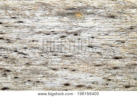 Old weathered distressed rustic wood as background