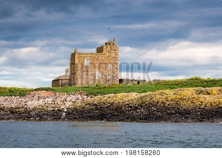 Inner Farne St Cuthbert's Chapel - Surrounded by seabird colonies on Inner Farne is the old St Cuthbert's Chapel