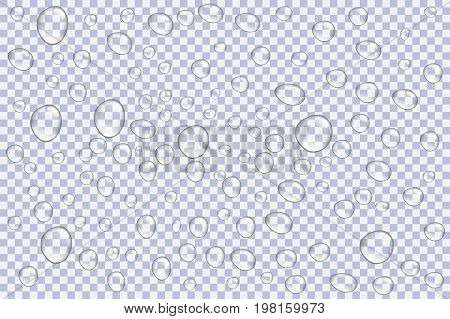 Clear Vapor Bubbles On Window Glass Surface. Realistic Pure Water Rain Drops. Steam Shower. Isolated