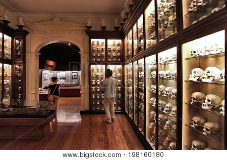 Canario Museum