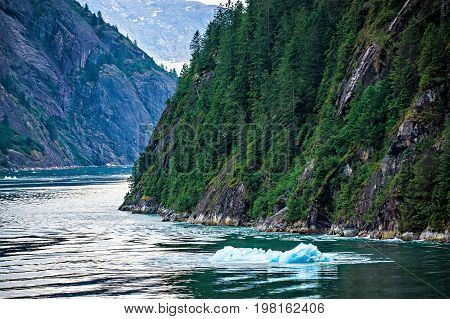 the tracy arm fjord at sawyer glacier