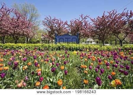 City park with spring flowers, wooden sign and flowering trees with gazebo in background.