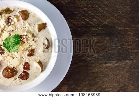 A closeup of a plate of a mushroom cream soup with champignons, cremini, fresh parsley,  with grated cheese, on a dark rustic background texture, with a place for text