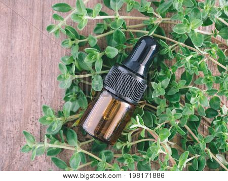 Organic essential thyme oil with pipette and green leaves of thyme. Top view or flat lay. Copy space.