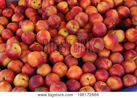 resh Organic Peaches Heap Of Fresh Ripe Peaches