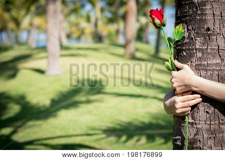 Happy Young Woman With Holding Roses In The Coconut Park.