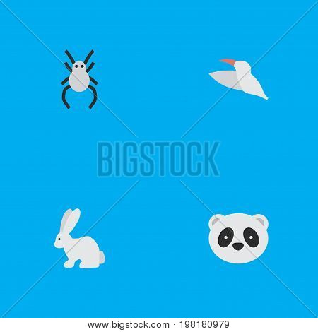 Elements Hare, Crane, Tarantula And Other Synonyms Bunny, Widow And Animal.  Vector Illustration Set Of Simple Wild Icons.