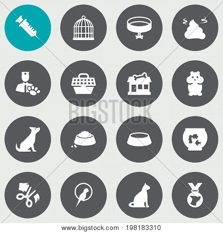 Collection Of Dish, Neckband , Food Elements.  Set Of 16 Mammal Icons Set.