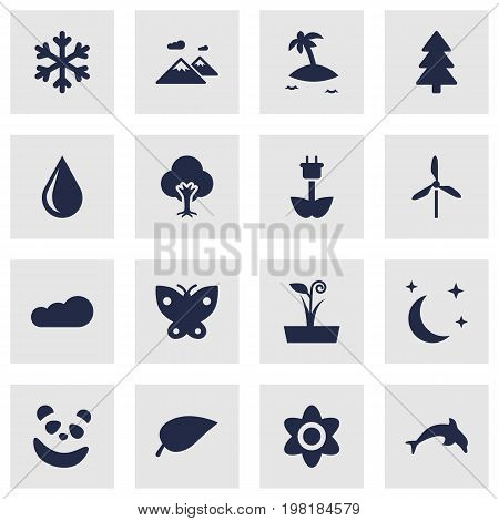 Collection Of Pinnacle, Green Power, Tree And Other Elements.  Set Of 16 Nature Icons Set.