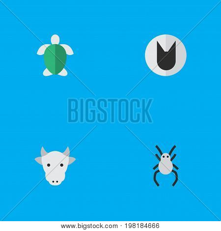 Elements Tomcat, Tarantula, Turtle And Other Synonyms Cat, Turtle And Widow.  Vector Illustration Set Of Simple Fauna Icons.