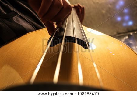 The musician plays the double bass. The light tone color of the bass. Bottom view