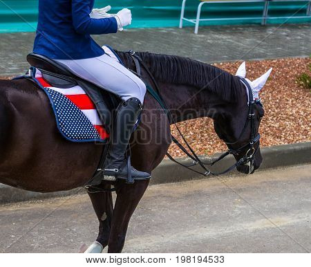 Black dressage horse and girl at show jumping after taking part in competition. Equestrian sport background. Glossy black horse portrait during dressage competition.