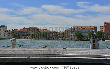 The island of Giudecca in the Dorsoduro quarter of Venice viewed from the opposite side of the Giudecca canal