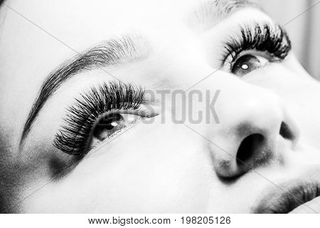 Beautician Making Artificial Lashes. Eyelash Extension Procedure