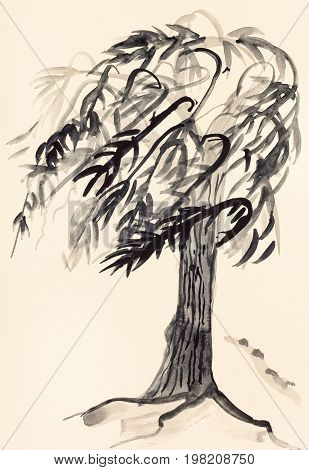 Sketch Of Willow Tree