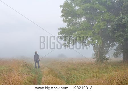 young man in foggy morning on meadow in autumn looks at big tree. A traveler on autumn meadow foggy morning.