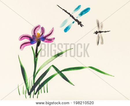 Two Dragonflies Over Iris Flower On Meadow