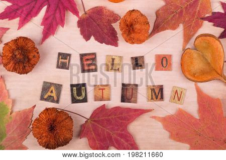 Hello autumn text with autumn leaves and objects on vintage paper
