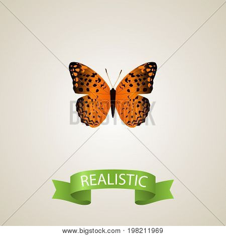 Realistic Monarch Element. Vector Illustration Of Realistic Danaus Plexippus Isolated On Clean Background