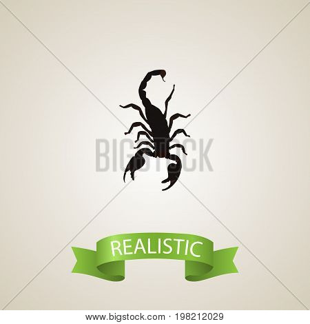 Realistic Scorpion Element. Vector Illustration Of Realistic Poisonous Isolated On Clean Background