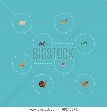 Flat Icons Trunked Animal, Waterbird, Reptile And Other Vector Elements