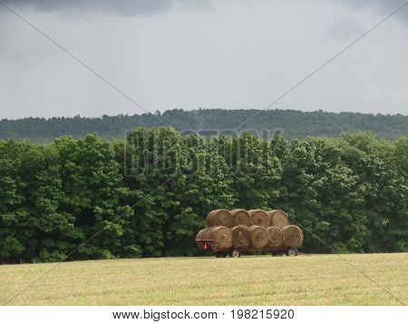 Round hale bales on a wagon sitting in a country field in Greene NY