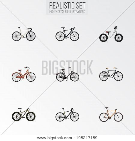 Realistic Equilibrium, Road Velocity, Hybrid Velocipede And Other Vector Elements