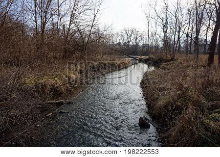 A creek in the Hammel Woods Forest Preserve in Shorewood, Illinois, leads to the Du Page River, during December.