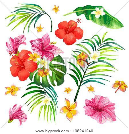 Vector illustration of a realistic style branch of a tropical palm tree with hibiscus flowers isolated on white background. Tropical print, template, design element with flowers and leaves