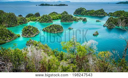 Pianemo islands surrounded by azure clear water and covered by green vegetation. Raja Ampat, West Papua, Indonesia.