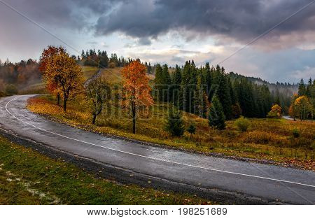 Countryside Road Through Forest In Stormy Weather