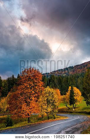 Gorgeous Cloudy Sky Over Colorful Foliage On Serpentine