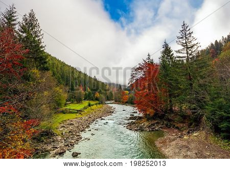 Gorgeous Autumn Countryside Landscape With Forest River
