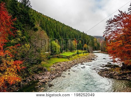 Picturesque Autumn Scenery With Forest River In Mountains