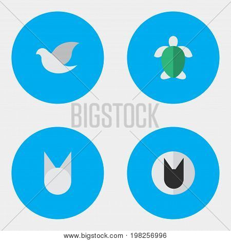 Elements Turtle, Pigeon, Cat And Other Synonyms Pigeon, Tortoiseshell And Bird.  Vector Illustration Set Of Simple Animals Icons.