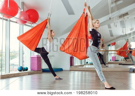 Fly yoga. two women practices anti-gravity yoga with a hammock .