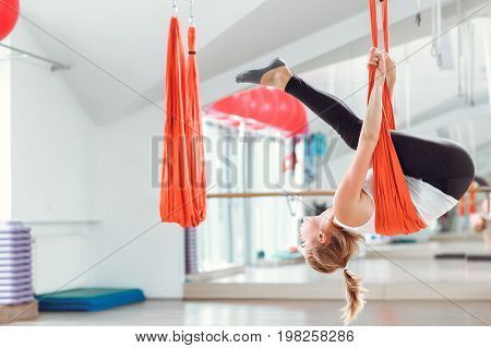Fly yoga. Young woman practices aerial anti-gravity yoga with hammock .